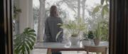 W I S H Trailer 30″
